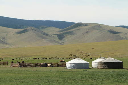 Yurt settlement in Mongolia
