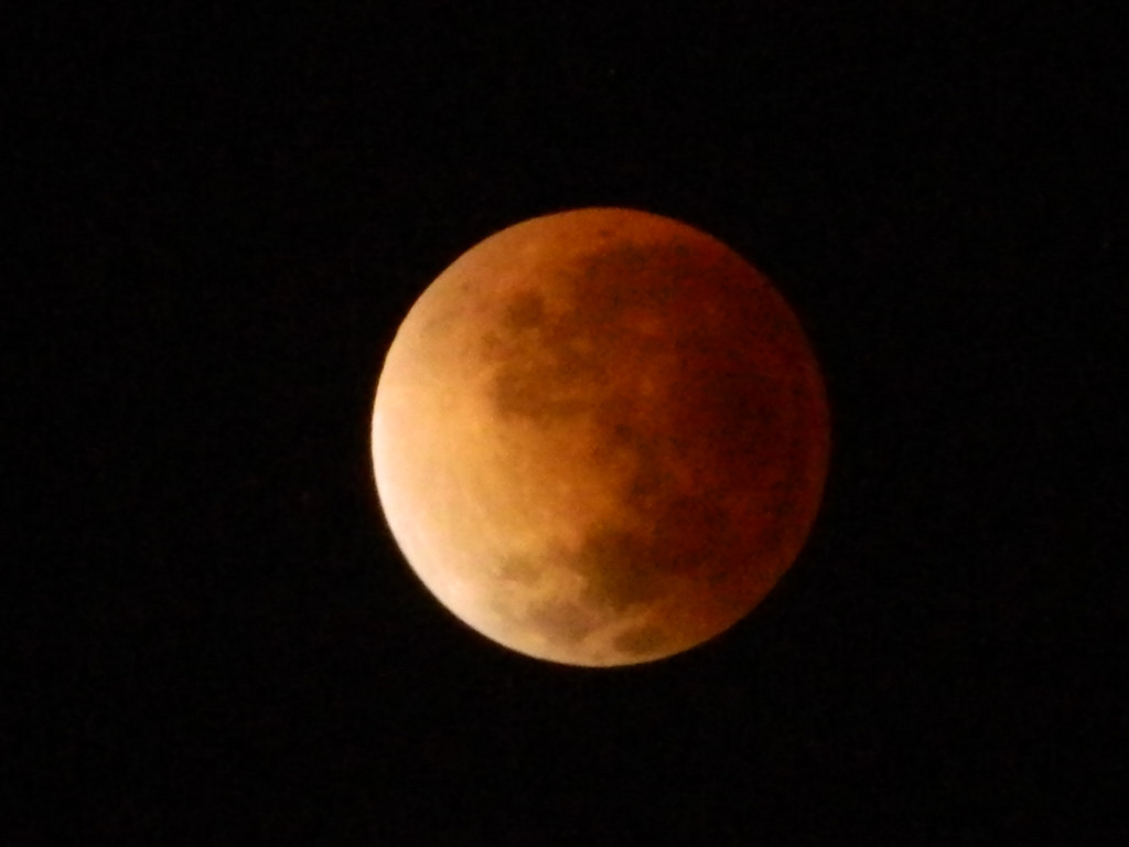 A Cross-Cultural View of Lunar Eclipses