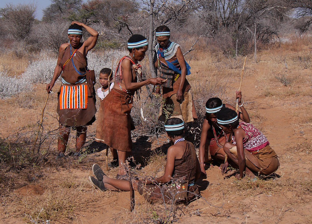 Hunter-Gatherers (Explaining Human Culture)