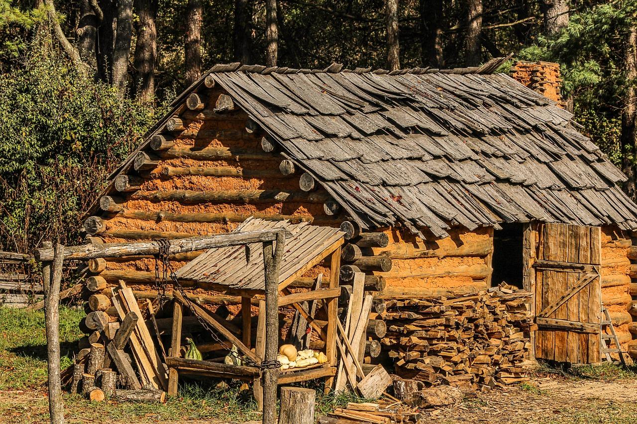 Dwellings (Explaining Human Culture)