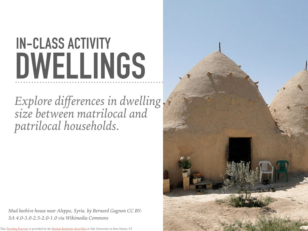 Dwellings In-Class Activity