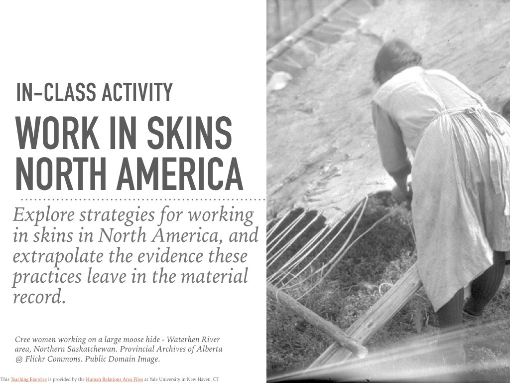 Work in Skins in North America In-Class Activity