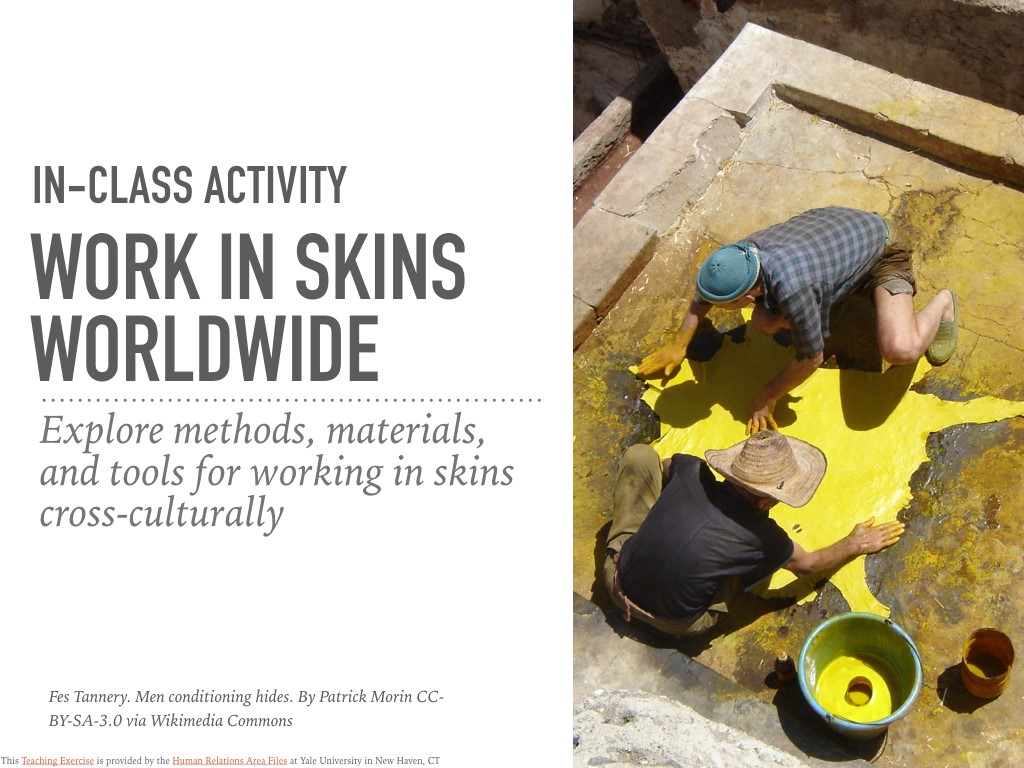 Work in Skins Worldwide In-Class Activity