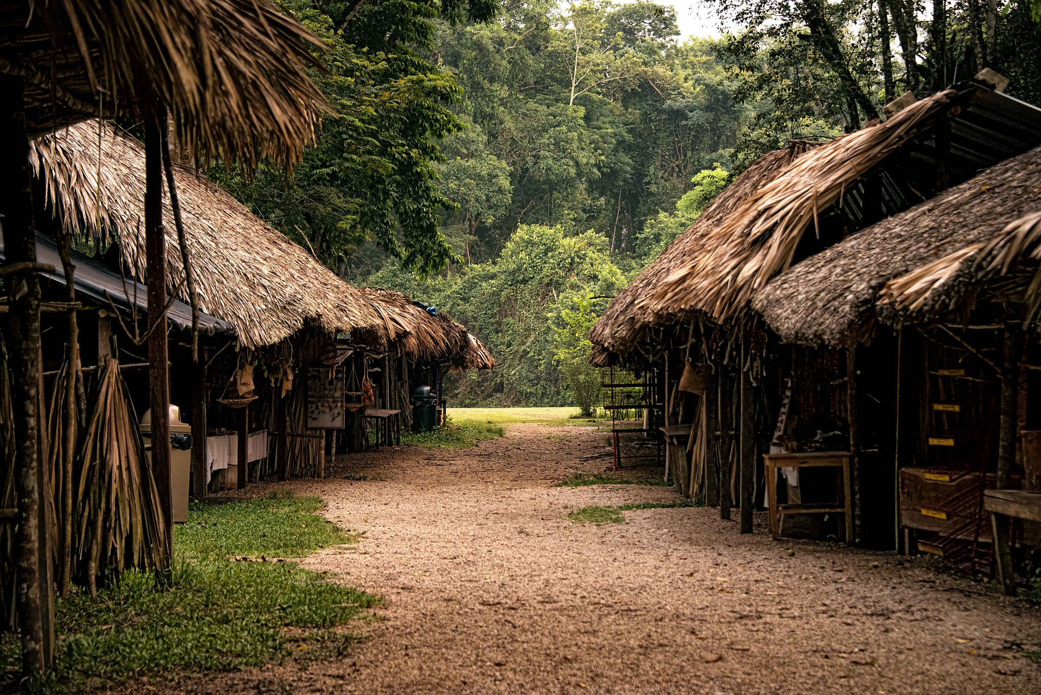 A footpath travels between two rows of houses, covered in thatch roof, with green jungle behind.