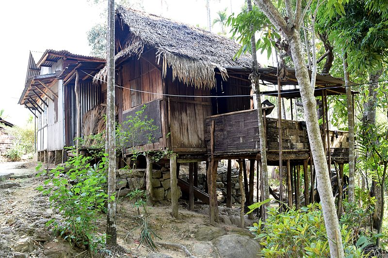 Image of a house built on stilts with thatch roof.