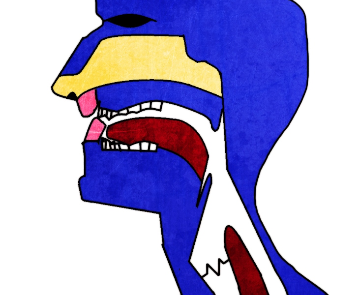 "Diagram showing half of a human head with top teeth biting over bottom lip to make ""v"" sound."