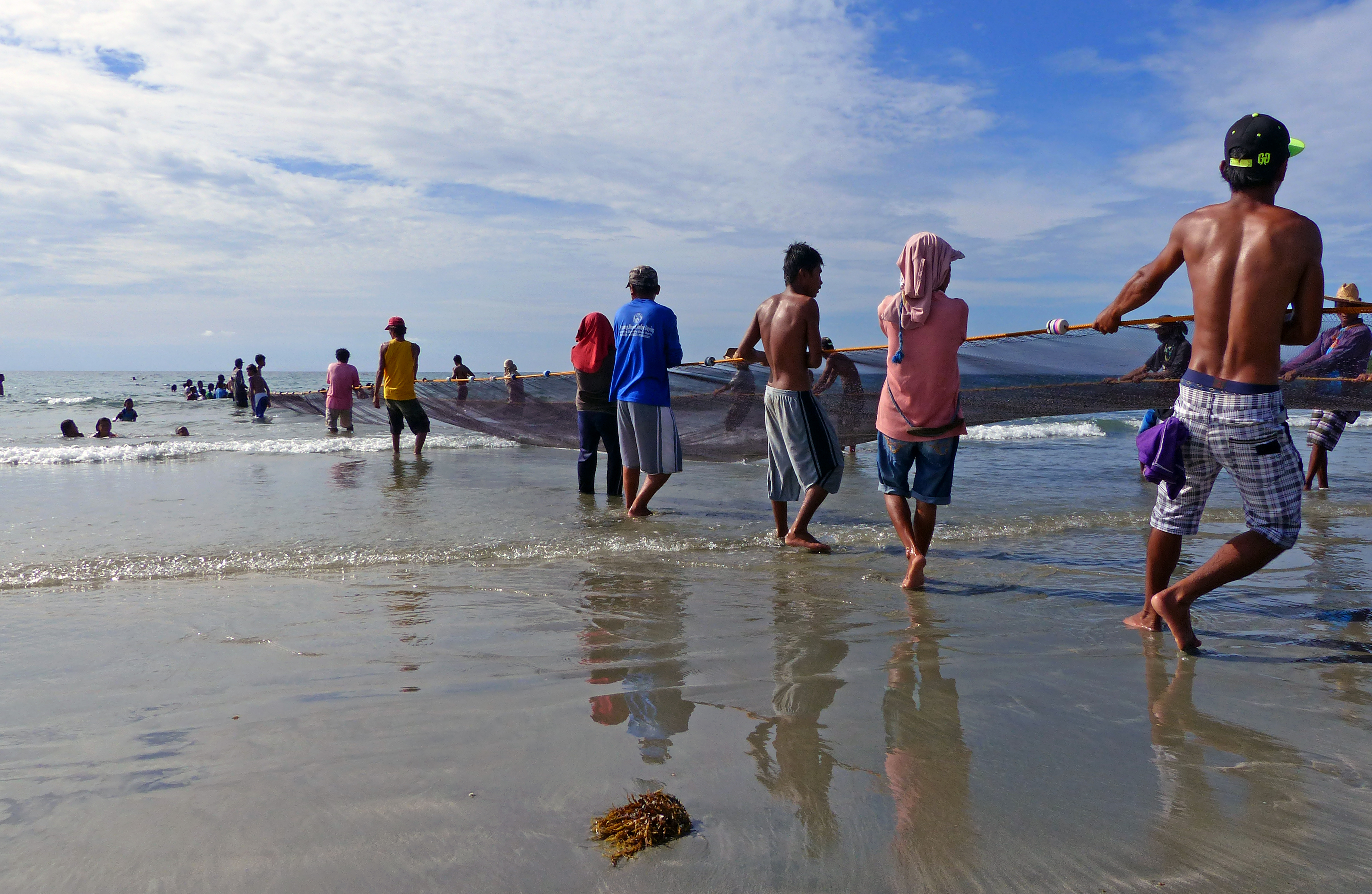 Men pulling net on beach, from behind.