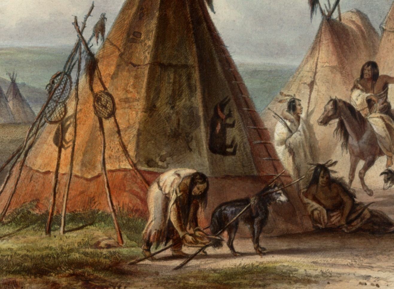 Painting of woman attaching a travois to a dog at her camp.