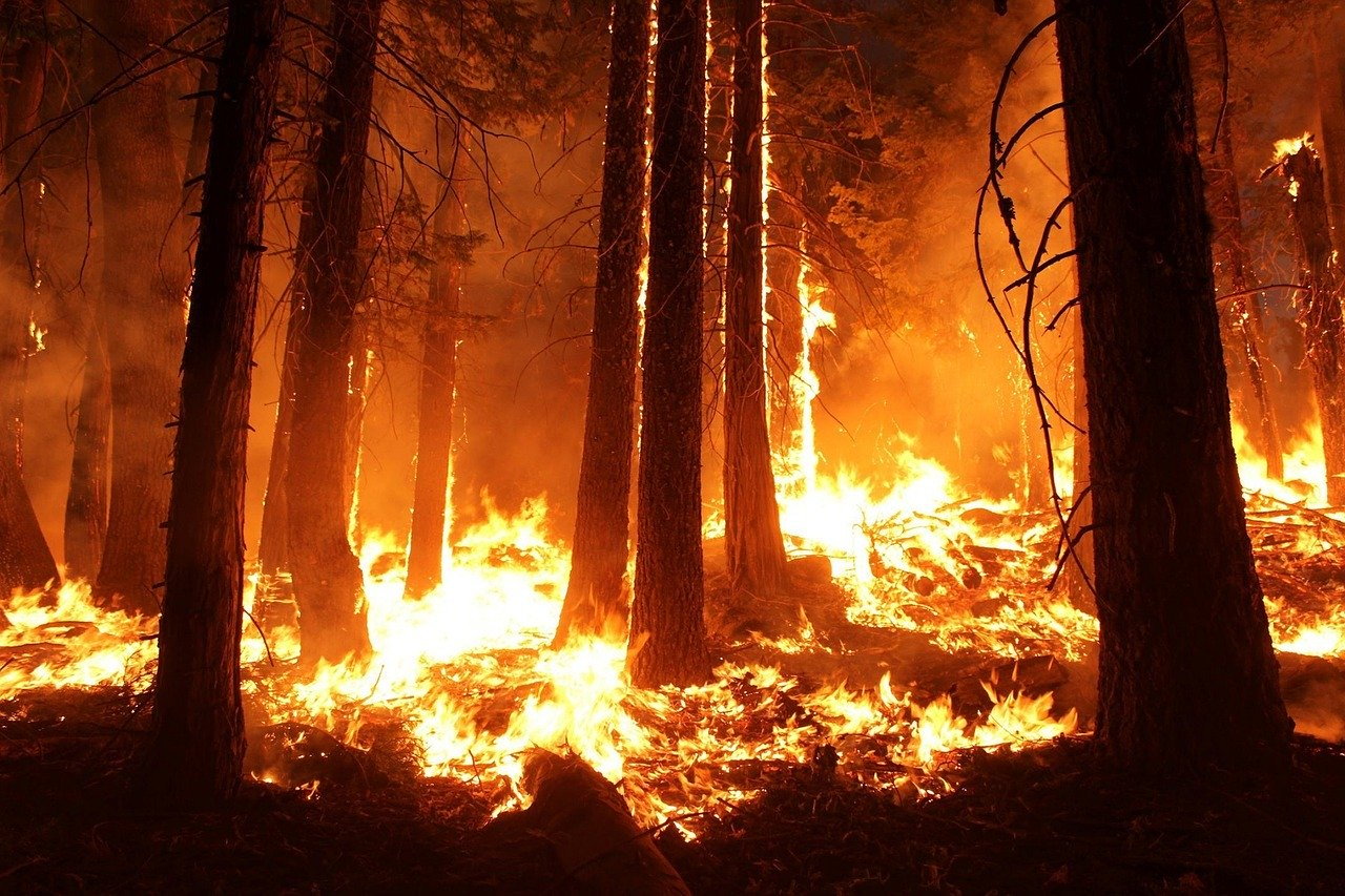 Ancient solutions to modern problems? Re-examining burning practices