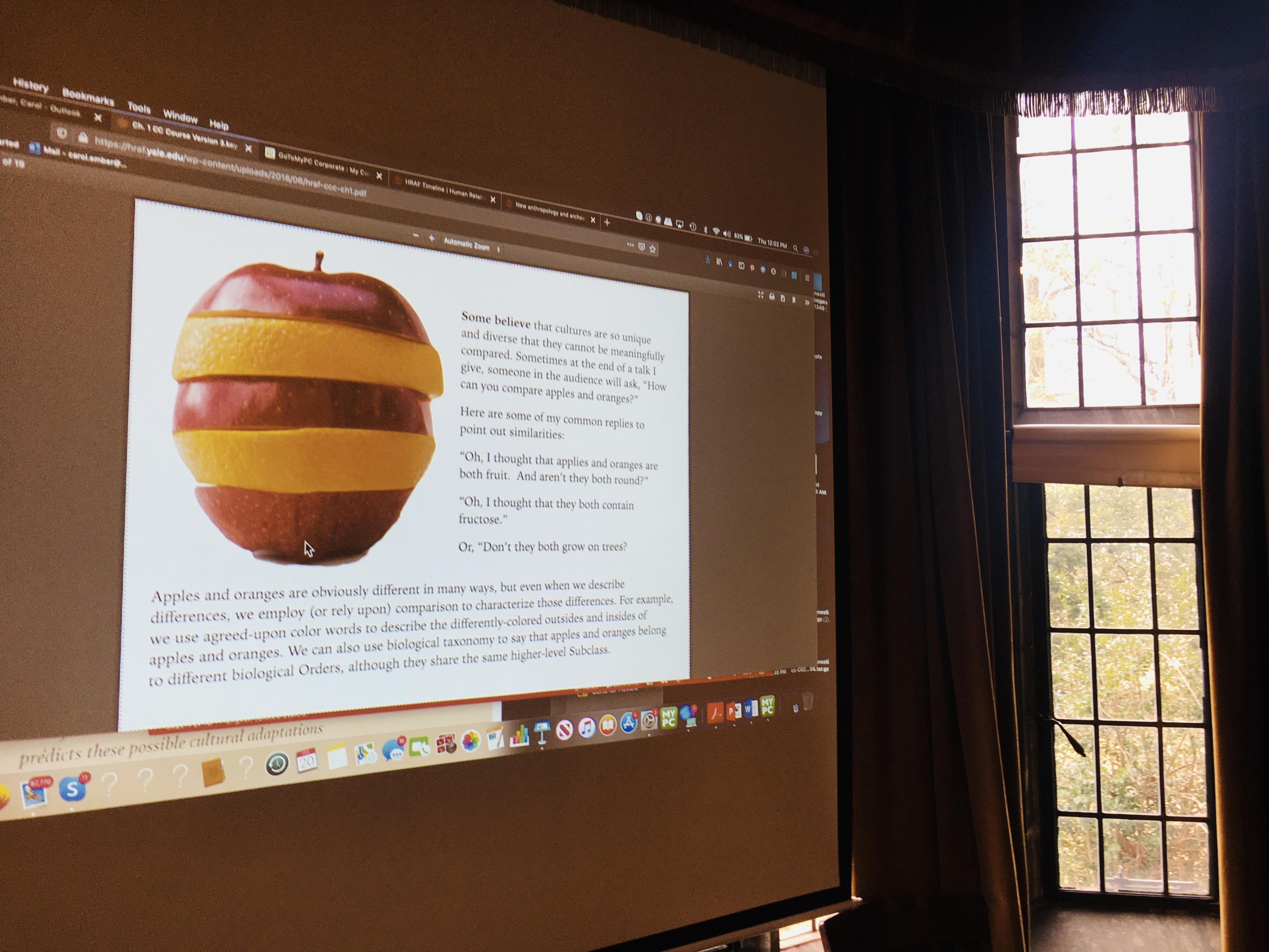 Apples and oranges presentation