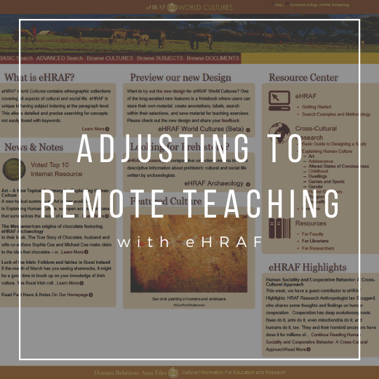 Remote Teaching icon