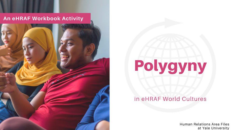 Polygyny Workbook