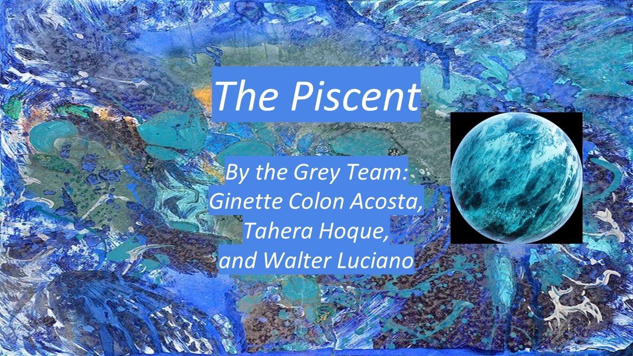 Grey Team Presentation